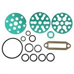 FDS438 Piston Pump O-Ring and Gasket Kit